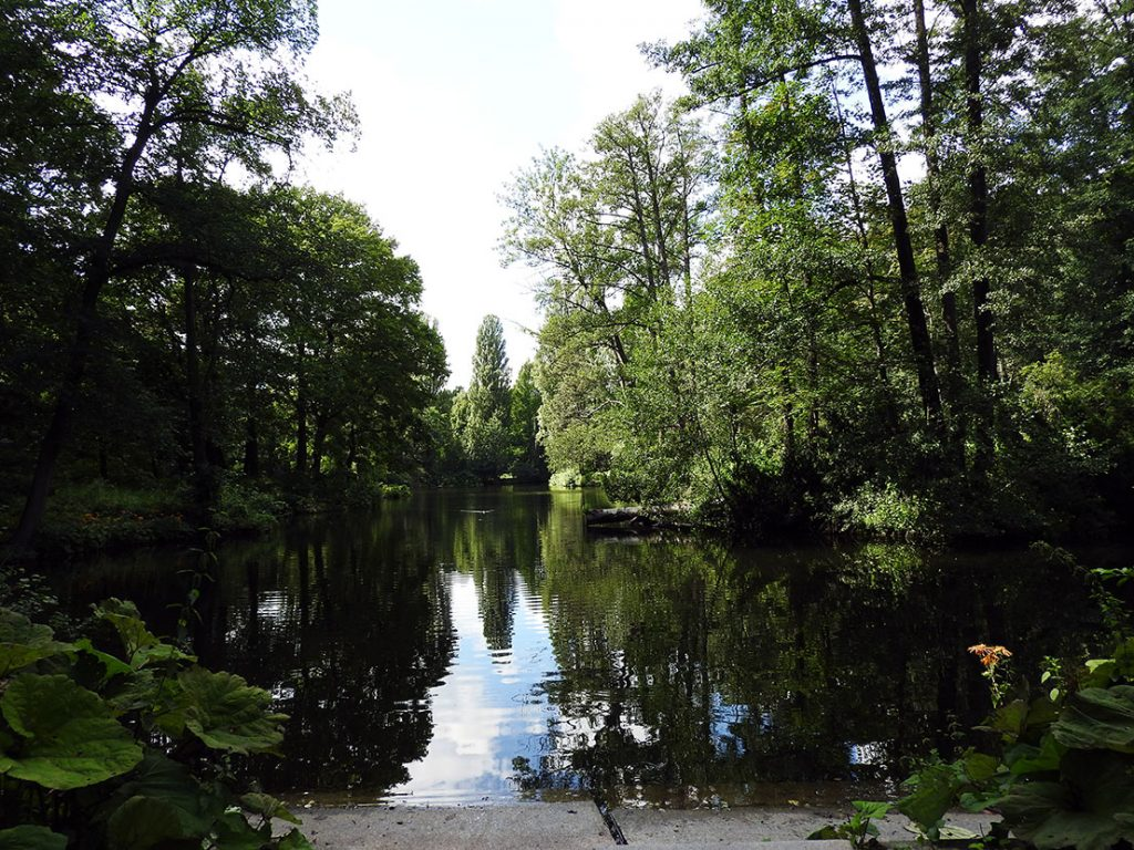 See Berlin's Tiergarten from Berlin Sightseeing Bus #100