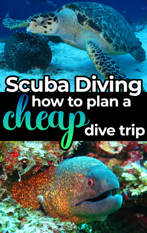 Exactly how to plan a cheap scuba diving trip, including the best budget-friendly destinations, how to book cheap scuba diving packages at your dive shop, and whether or not to buy your own scuba diving equipment.