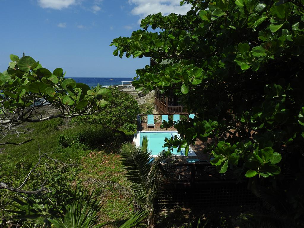 Cocolobo Hotel Roatan Pool