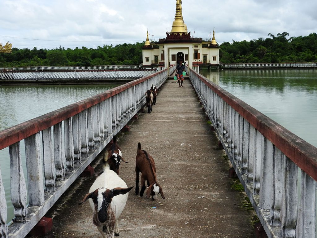 Yangon Travel - Snake Pagoda at Hmwe Paya in Twante