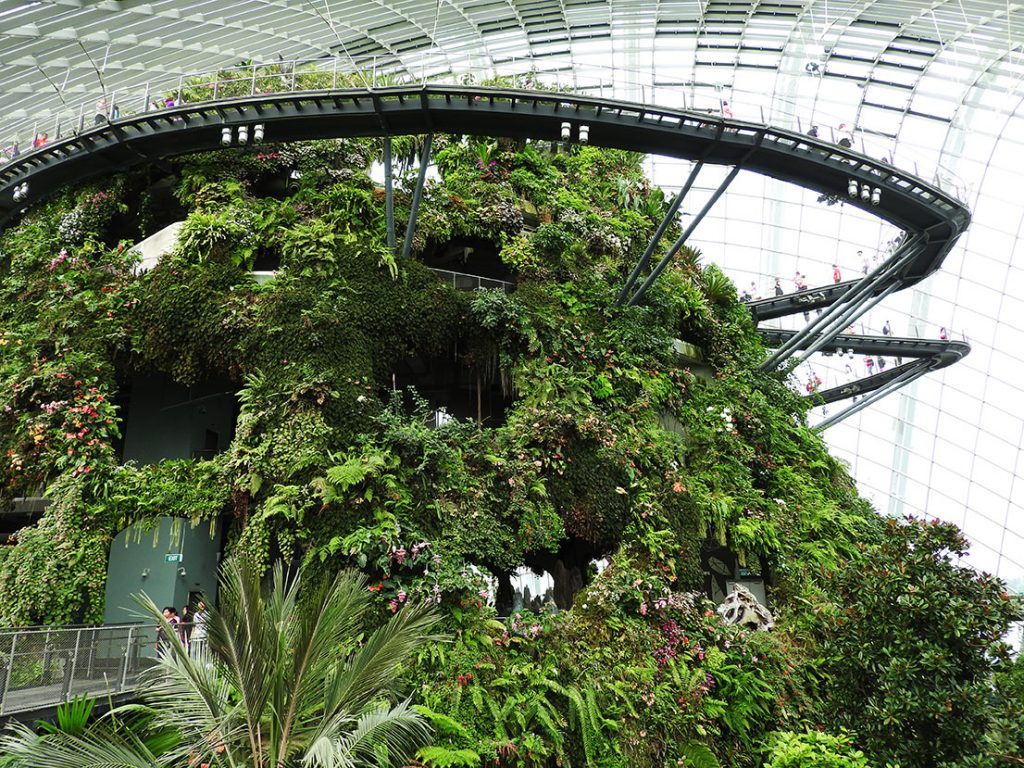 The Best Singapore Tourist Spots - Gardens by the Bay