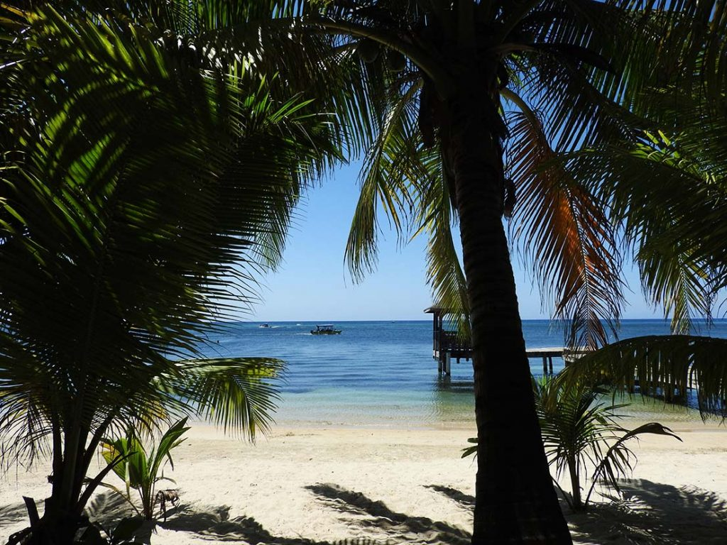 The Beach in West End Roatan