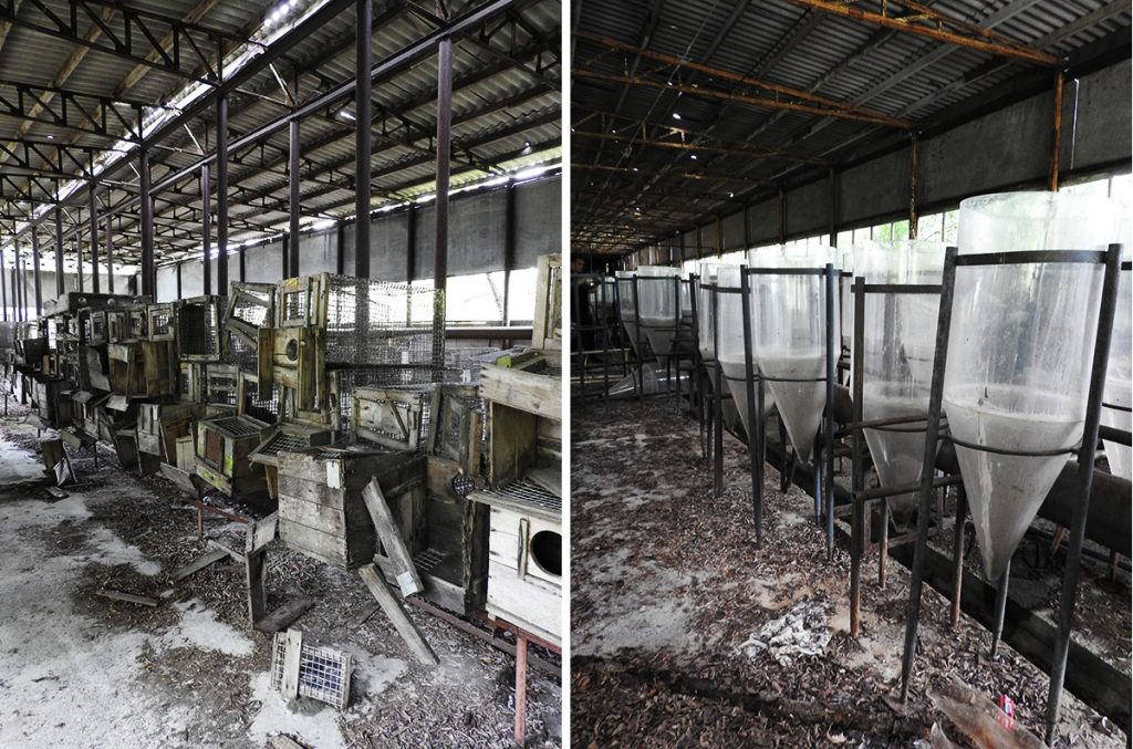 Abandoned Science Laboratories in Chernobyl