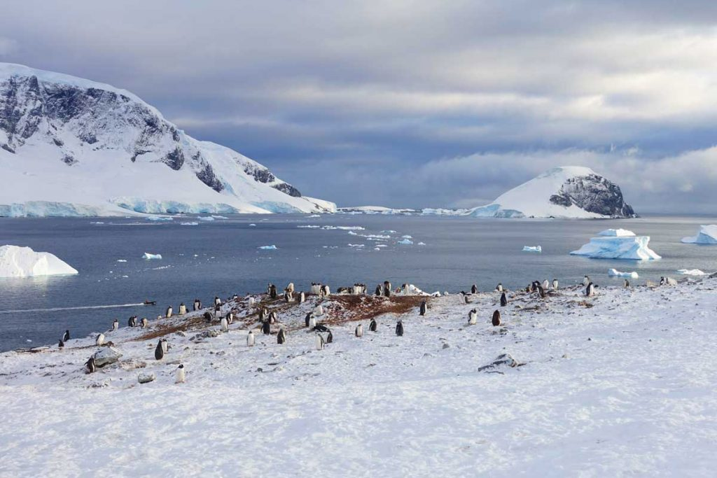 30 After 30 Travel Destinations - Antarctica