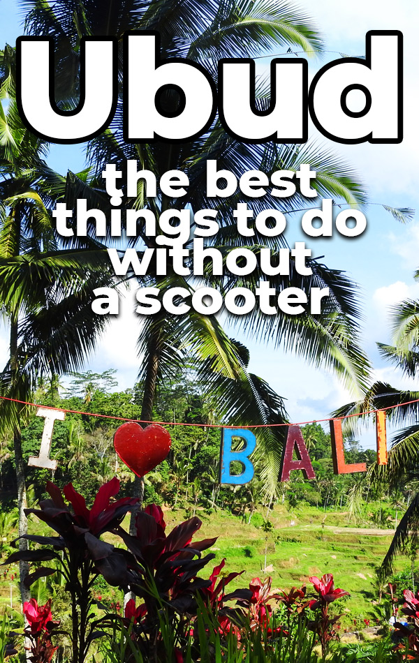 The best things to do in Ubud, Bali without a scooter. You can visit temples, walk through nature, relax at a spa and get up close and personal with monkeys - no scooter required!