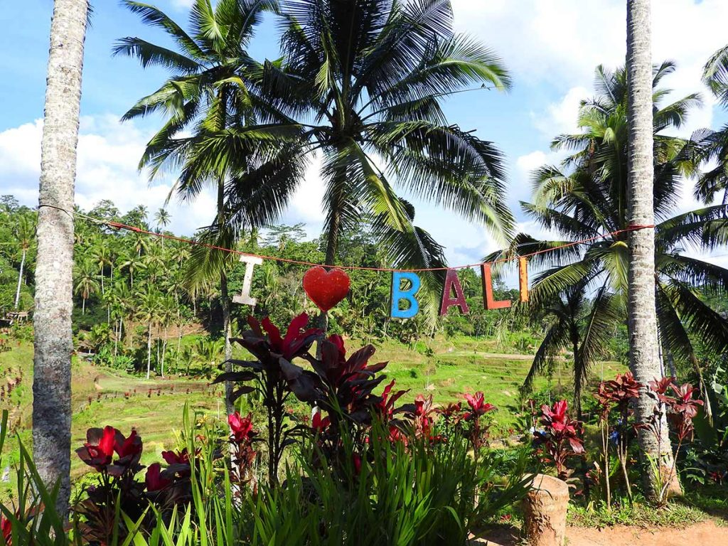 Things to Do in Ubud, Bali (Without a Scooter!) - I Love Bali!