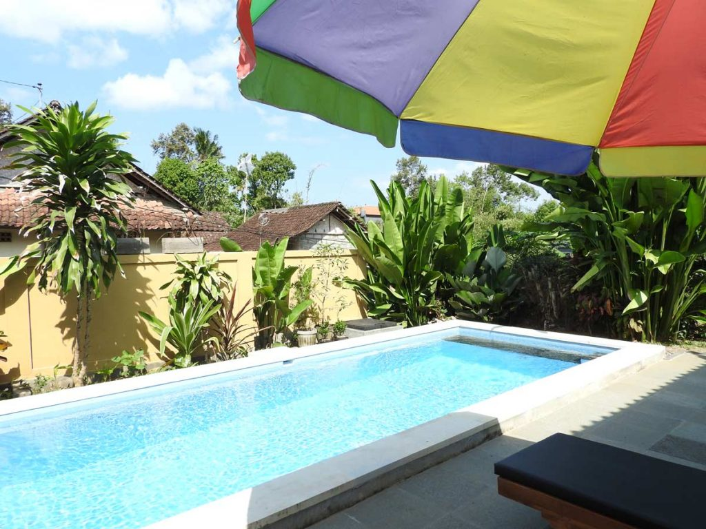 Ubud Guesthouse Swimming Pool - The garden at Dipa Homestay in Ubud, Bali