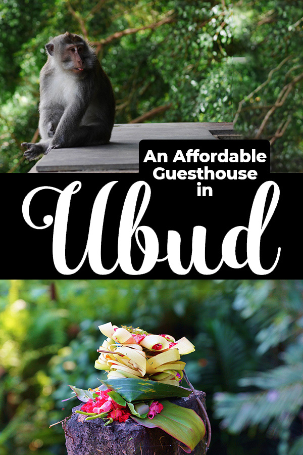 Dipa Homestay is an Ubud guesthouse operated by a local family. In the center of Ubud, Bali, it is walking distance from yoga students, vegan restaurants and Balinese Hindu temples.