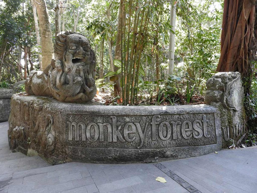 Ubud Monkey Forest - The Good, The Bad & The Bananas