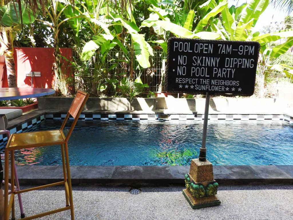 Canggu Hotel Pool at Sunflower Stay and Surf Guesthouse Accommodation