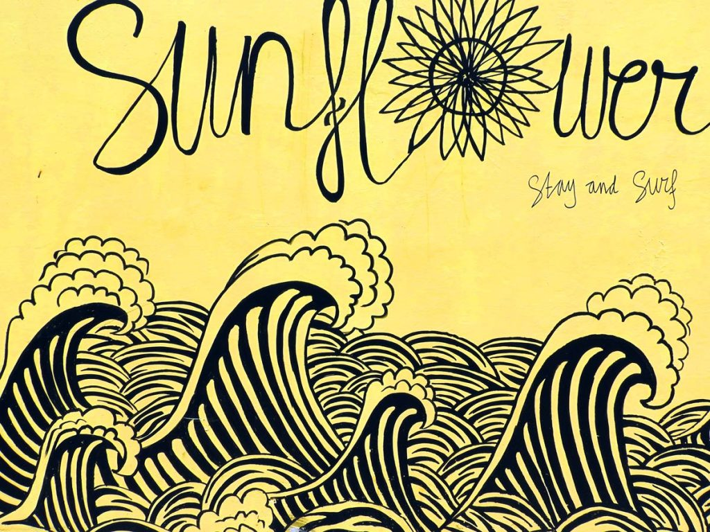 Sunflower Stay and Surf Accommodation in Canggu, Bali
