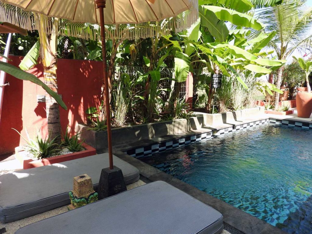 Pool at Sunflower Stay and Surf Guesthouse in Canggu, Bali