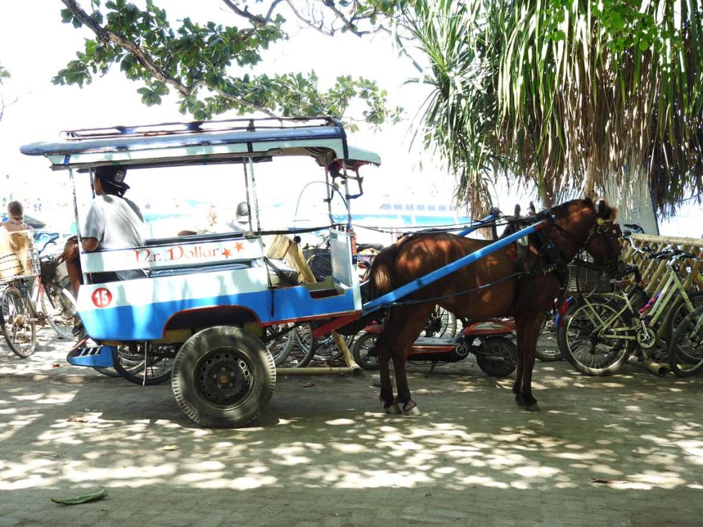 Horse Carriage Transportation on Gili Air