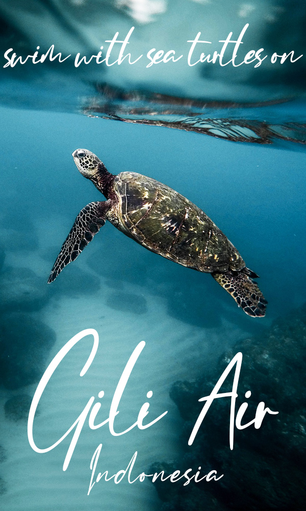 Swim with sea turtles on Gili Air, the chillest island in Indonesia. Relax on white sand beaches, scuba dive, snorkel, do yoga or do nothing on the best Gili Island near Bali!