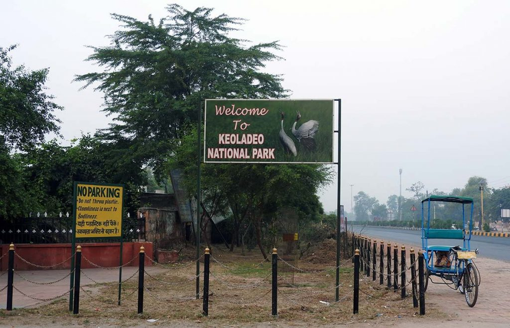 The Bharatpur Bird Sanctuary in Keoladeo National Park, Rajasthan, India