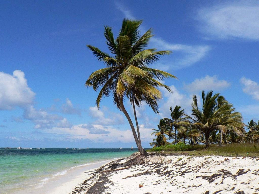 The best 2020 travel destination for Aquarius is Punta Canada, Dominican Republic
