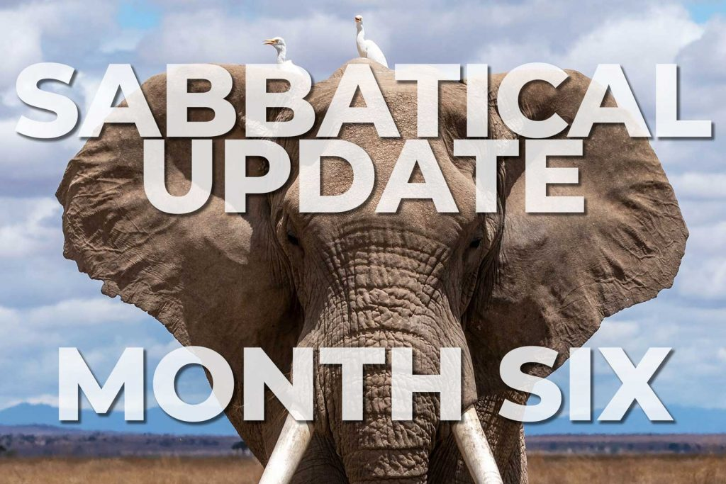 Sabbatical Update from Month 6 (December 2019)